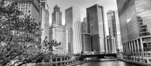 Looking to hire in chicago?